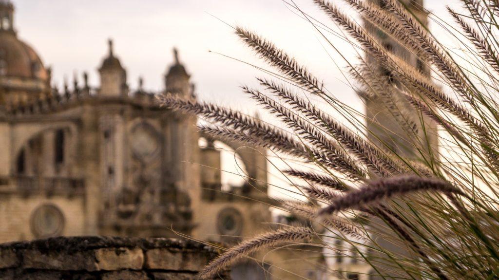 catedral-jerez-turismo